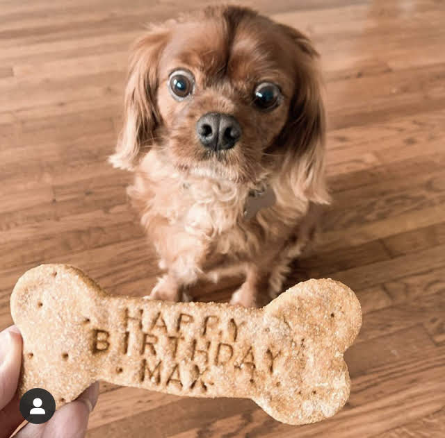 Max's birthday treat