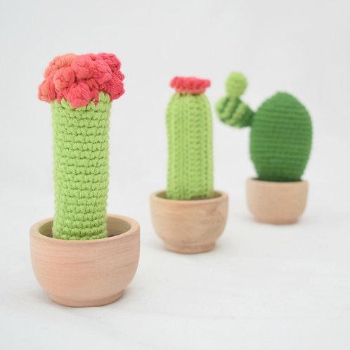 """Kit """"Set de Cactus"""""""