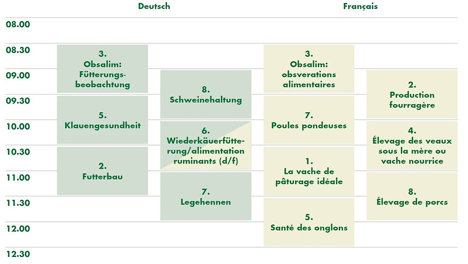 Programm BVT_2021.jpg