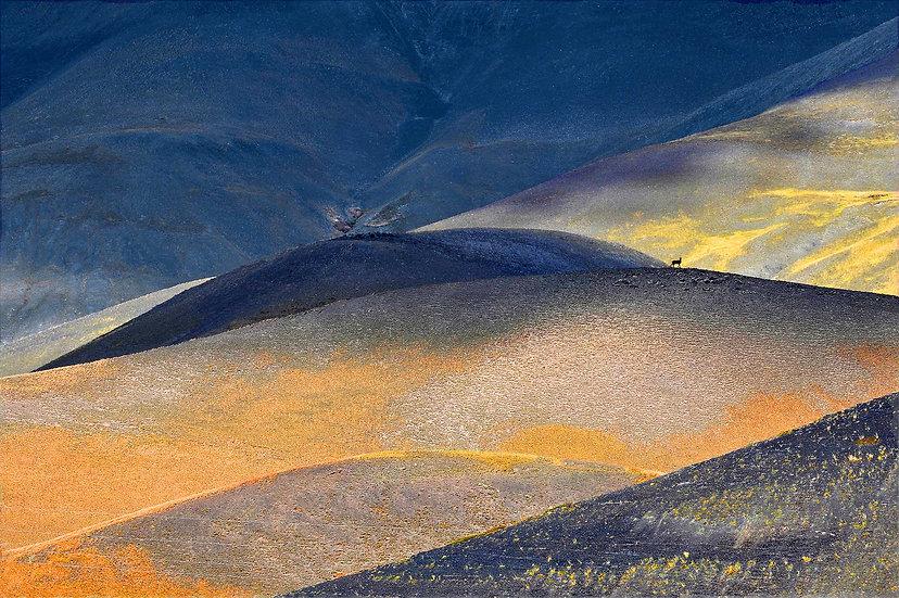 Amedée De Almeida . Montagne De Bleu