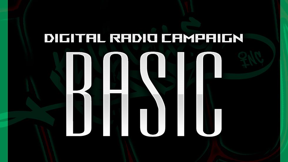 Digital Radio Campaign - Basic: 600 Spins