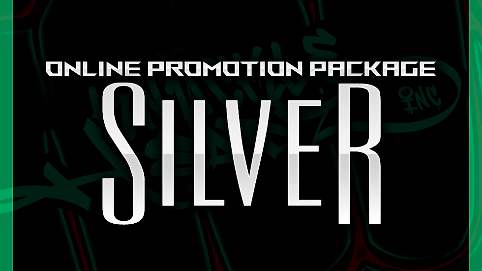 Silver Online Promo Package
