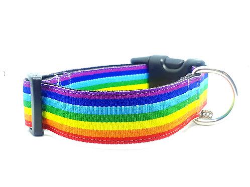 Halsband hond - Rainbow