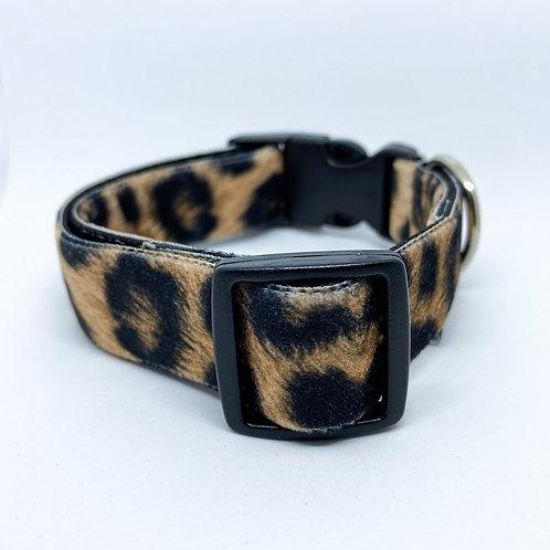 Halsband hond - Dana