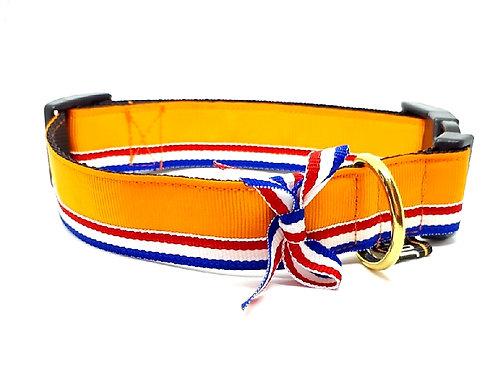 Halsband hond - Oranje Holland