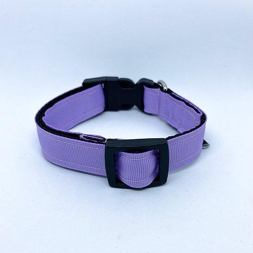 Halsband hond - Lola