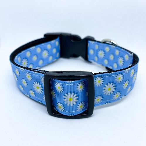 Halsband hond - Daisy