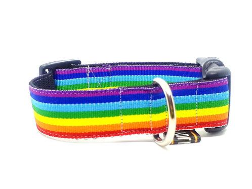 Hondenhalsband - Regenboog