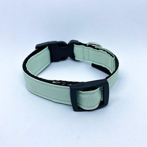 Halsband hond - June