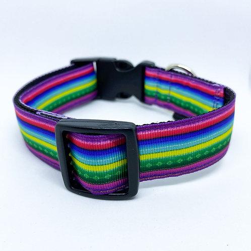 Halsband hond - Maya