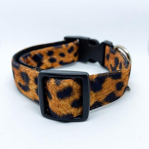 Halsband hond - Bella