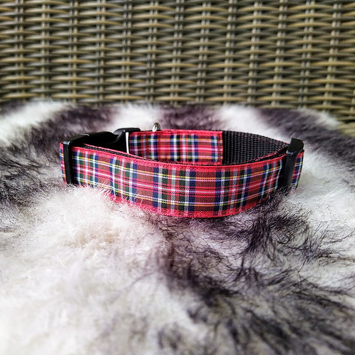 Halsband hond - Edward
