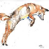 JESSE fox WEBSITE.png