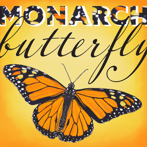 MONARCH_butterfly_KLance.png
