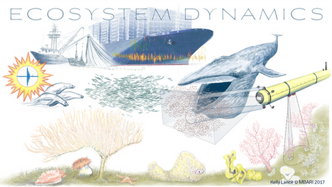 Ecosystem_Dynamics_©.png