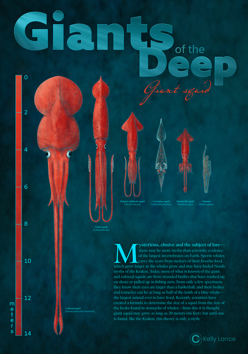 GiantSquid_lineup_Poster_KLance_©.png