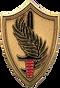 General Petraeus Award - Igor Babailov