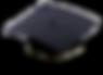 Academician_Cap_edited_edited.png