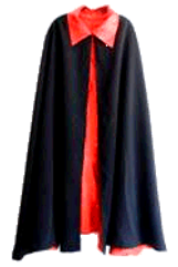 Academician_Gown_edited.png