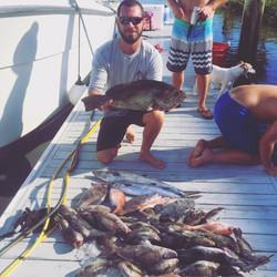 deep sea charter catch fishing