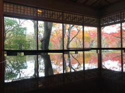 Hakone Museum in Autumn