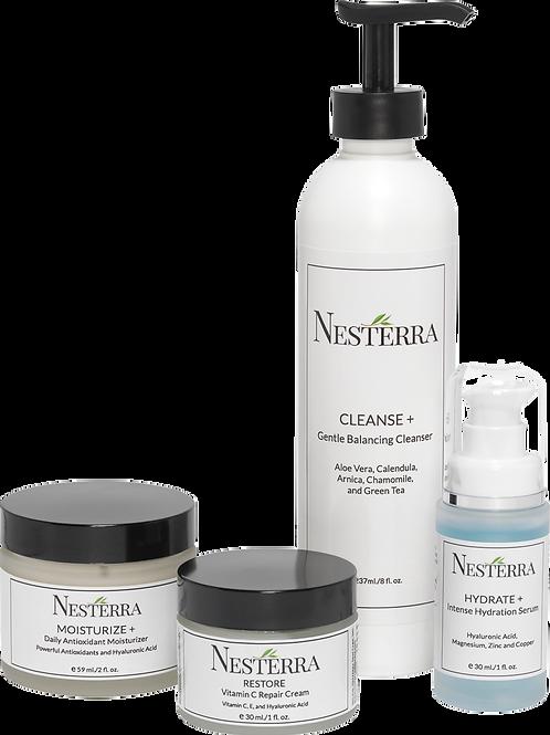 Nesterra Restoration Kit