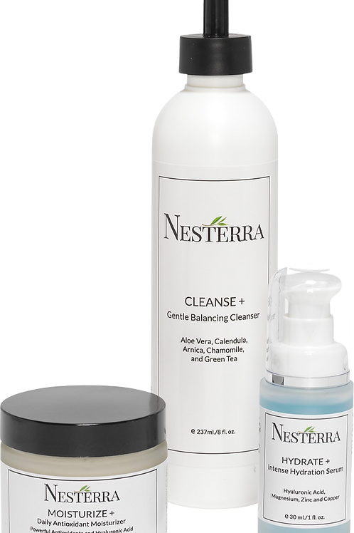 Nesterra Essentials Kit