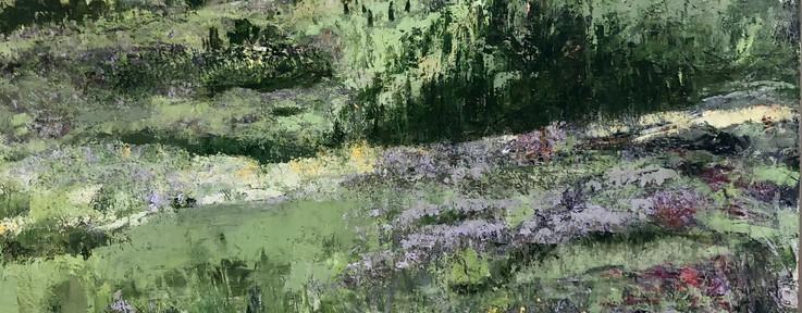 Mesa Trail Wild Flowers.jpeg