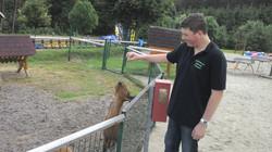 Ziegen  füttern !!!