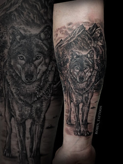Wolf Patrick