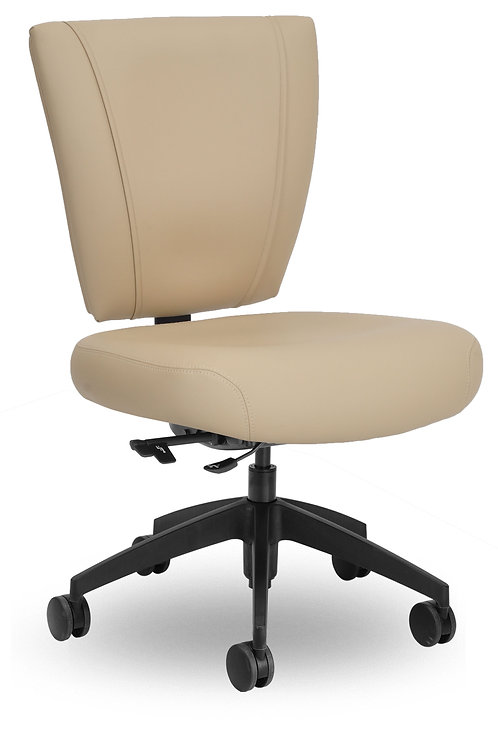 Sheila's Home Office Chair