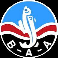 BAA 2.png