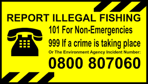 Illegal fishing.png