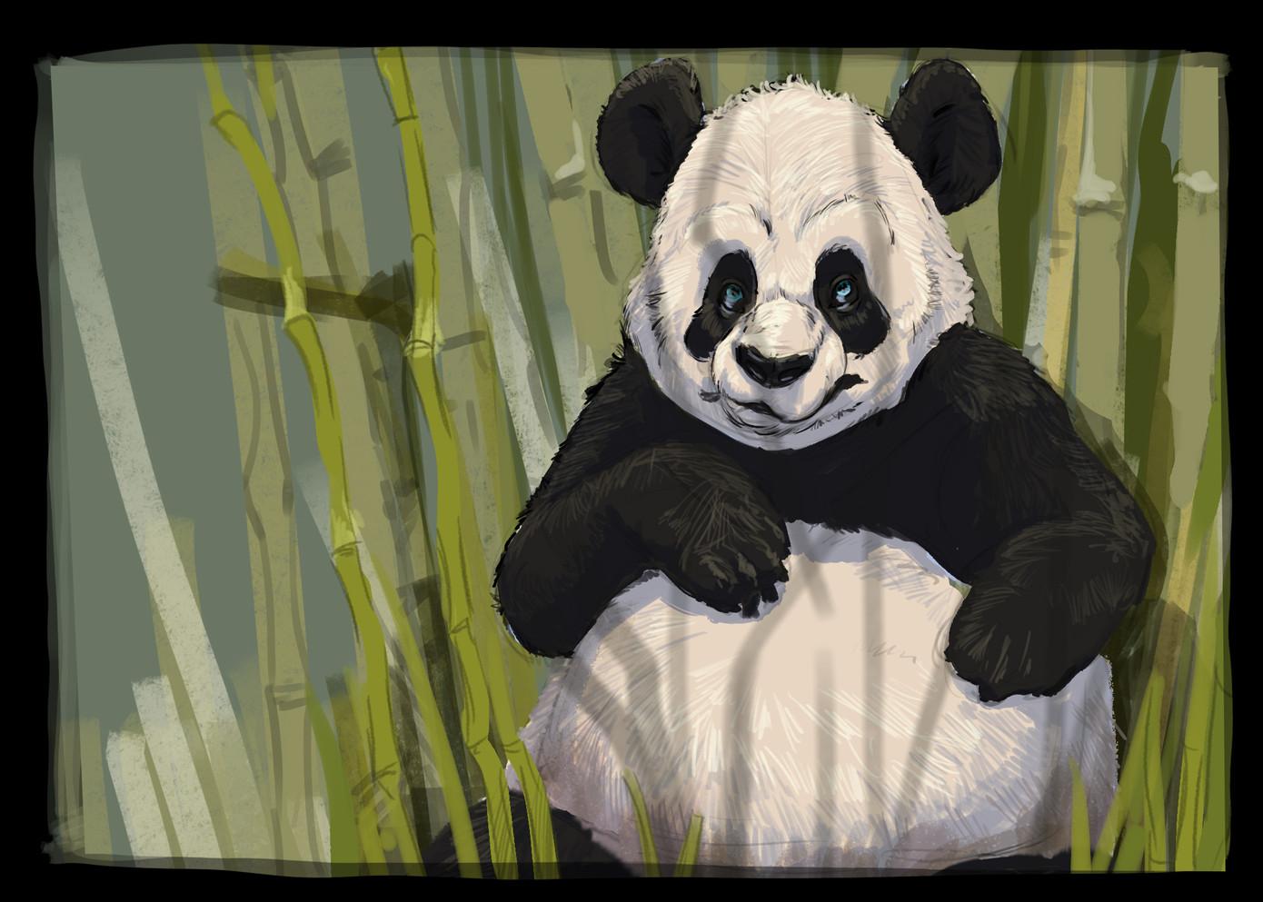 PandaSketch01.jpg