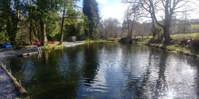 Lower pond.