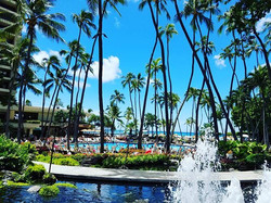 Life always takes a turn......back to everyday life. Aloha Hawai'i!! My time here was absolutely ama