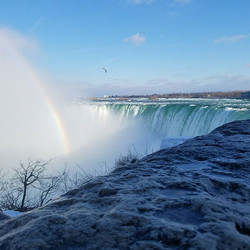 Do you think the bird was trying to find the pot of gold_ #fbf #niagarafalls #canada