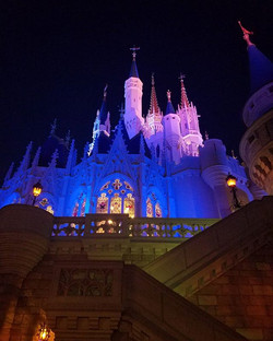 Take me back to the World of dreams! #waltdisneyworld #cinderellascastle #tbt
