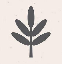 Chickahominy-Falls-Leaf-Logo.jpg