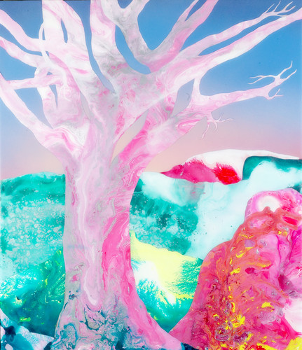 Kate Shaw Desert Frost 2006 acrylic and