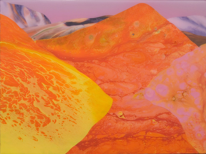 Kate Shaw 2007 acrylic and resin on boar