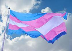 Transgender?