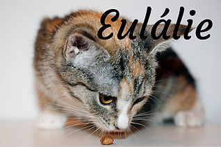 Eulálie.jpg