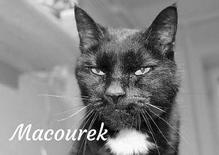 Macourek_ČB.jpg