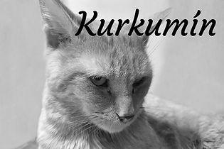 Kurkumín_nebe.jpg
