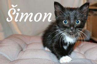 Šimon.jpg