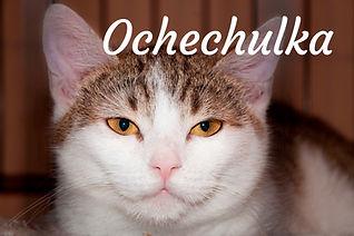 Ochechulka_titulka.jpg
