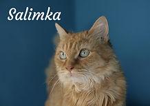Salimka