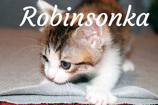 Robinsonka.jpg