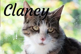 Clancy titulka.jpg